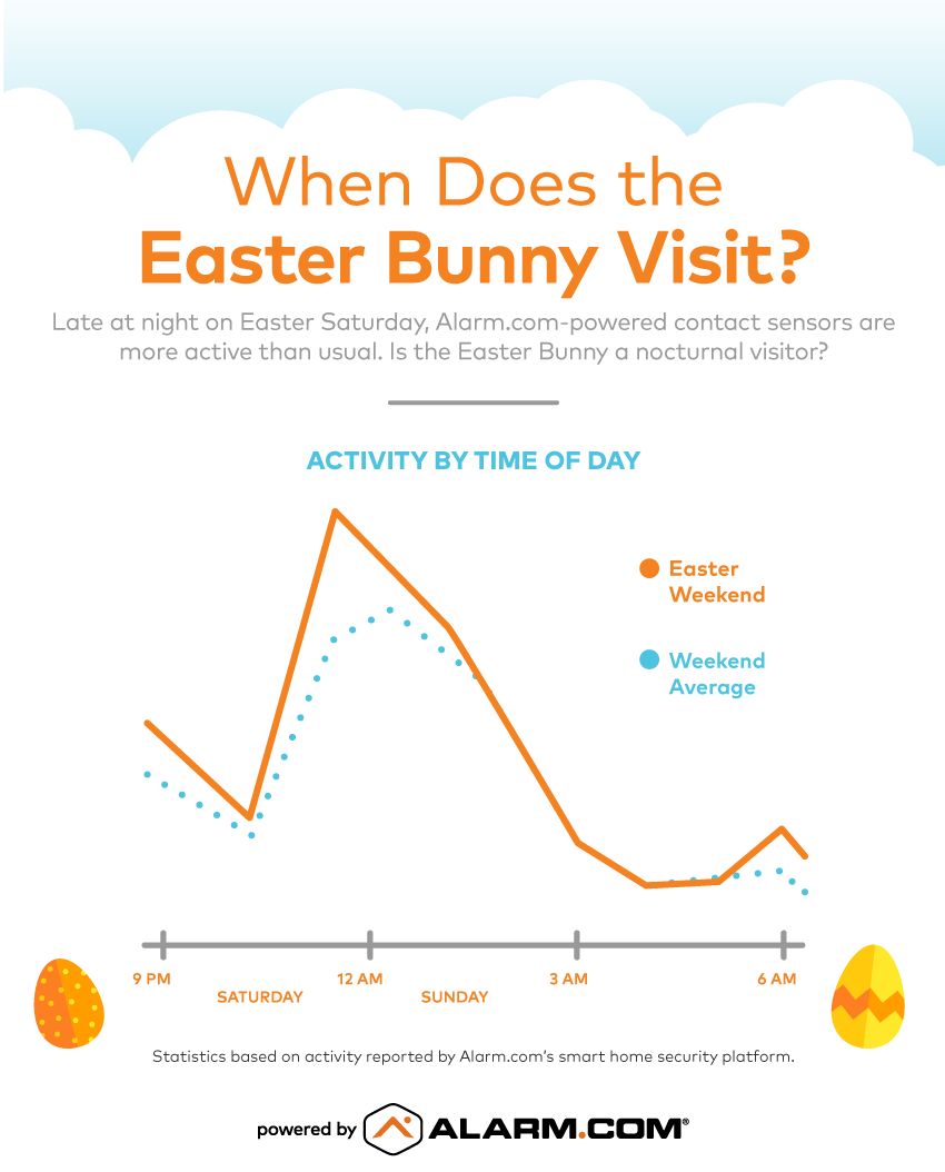 Easter Bunny Activity Infographic