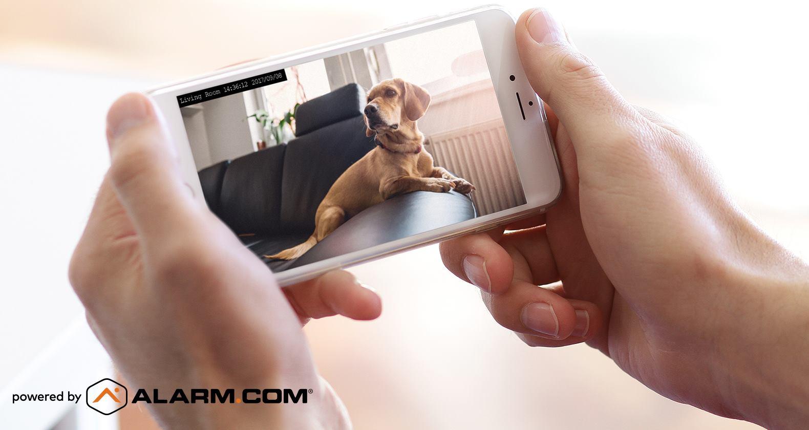 best-smart-security-camera-apps.jpg